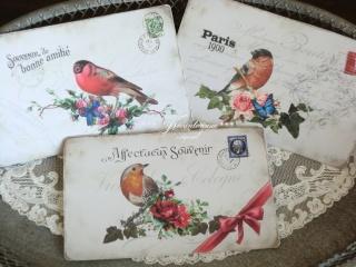 Feines 3-er Postkarten Set mit romantischen Vogel Motiven & französischer Schrift
