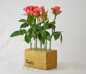 Vase  mit 8 Reagenzgläsern Geschenk Blumenvase Holzsockel Pressholz