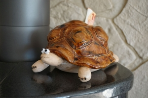 Schildkröte Spardose handgemacht, getöpfert, ton