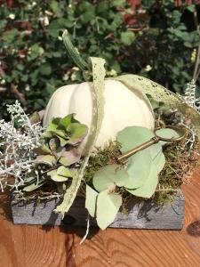 Holztablett mit Baby Boo Kürbis ~Herbstdeko