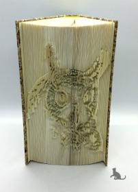 Gefaltetes Buch mit Tiermotiv ☆ Eule ☆ handgefertigt mit festem Einband kaufen
