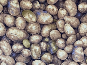 schöner Baumwollstoff  mit Kartoffeln - Handarbeit kaufen