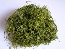 Dschungelmoos 30gr. in oliv