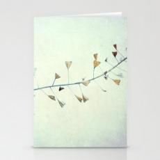 Design Fotokunst Postkarte Claudia Drossert