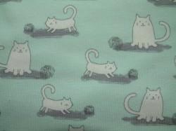 Jersey Katzen mint