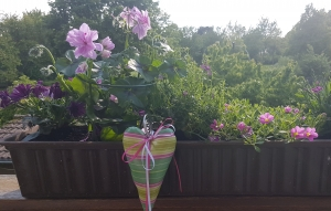 Liebevoll genähte Herzen aus beschichteter Baumwolle –auch für Gartendeko- in grün-pink gestreift - Handarbeit kaufen