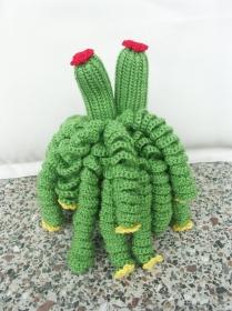 Kaktus - Handarbeit kaufen