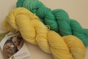 Handgefärbte Wolle Baby-Merino Set Nr. 98 Pascuali von Farbenspielerei