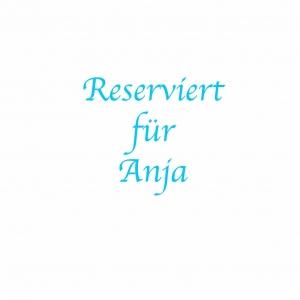 *Reserviert für Anja* Handgefärbte Wolle Merino-Seide und Mohair-Seide Set 20/30 von Farbenspielerei